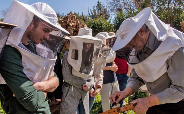Apiculture Training Seminars