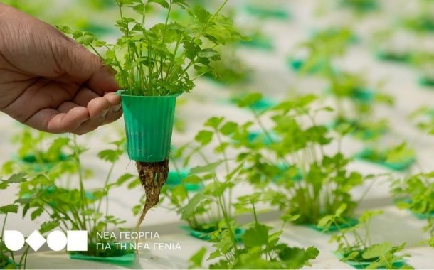 Πρόσκληση για συμμετοχή νέων αγροτών σε πρόγραμμα κατάρτισης & συμβουλευτικής σε πειραματικό αγρόκτημα