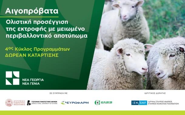 Έρχεται το νέο δωρεάν πρόγραμμα κατάρτισης στην αιγοπροβατοτροφία!