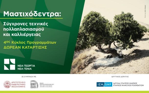 Το δωρεάν πρόγραμμα κατάρτισης στις τεχνικές καλλιέργειας μαστιχόδεντρων τώρα στη Χίο!